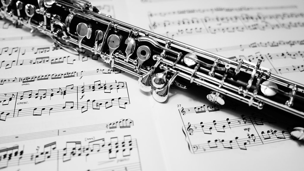 oboe__howarth_s40c__black_and_white_2_by_saxforlife-da73qit